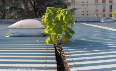 Traitement et nettoyage toitures et façades industrielles image 5