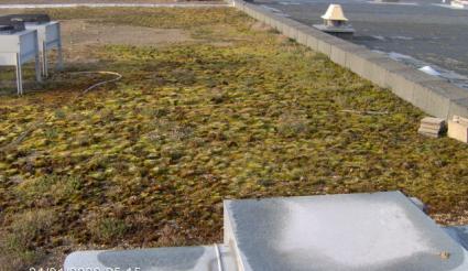 Traitement et nettoyage toitures et façades industrielles